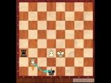Мини-курс по эндшпилю Дмитрия Гриценко. 8.Ладейный эндшпиль. Позиция Филидора